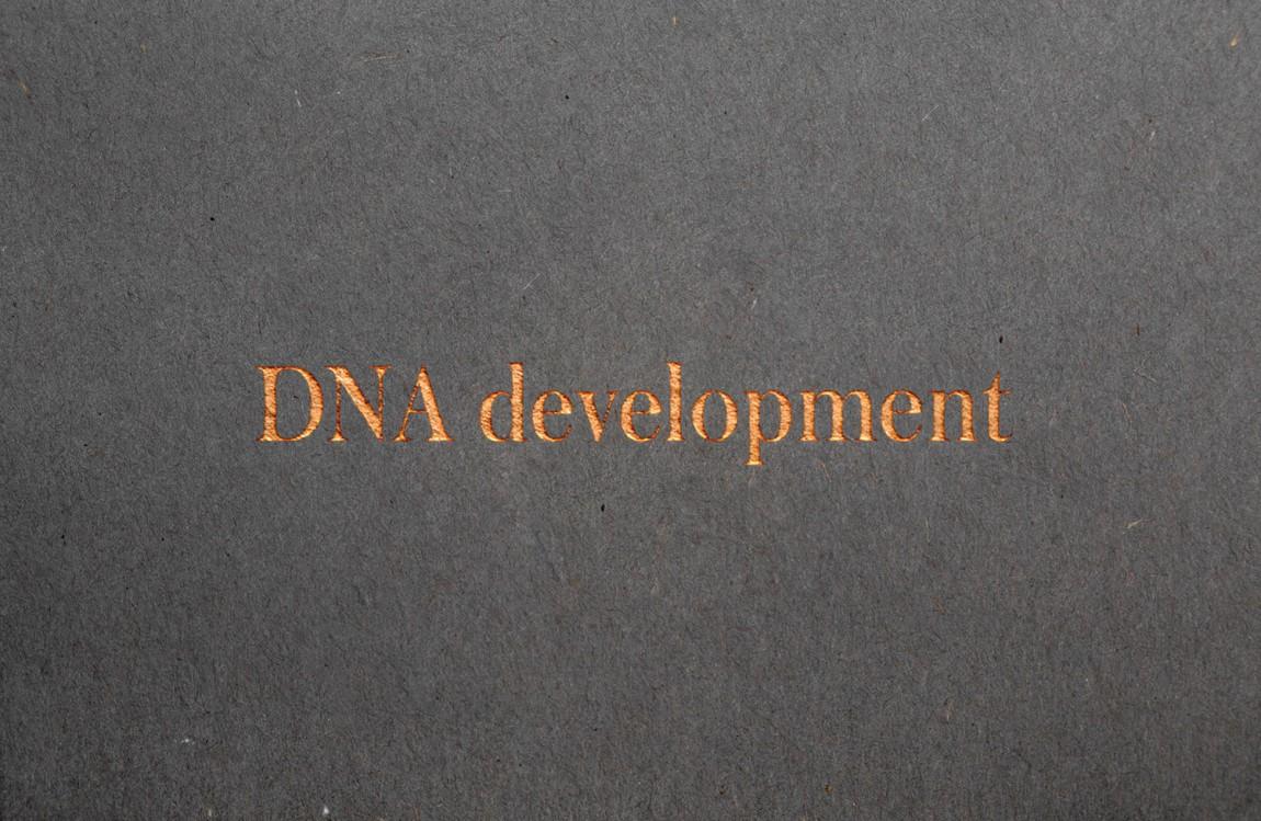 DNA Development 创意品牌logo设计:logo设计
