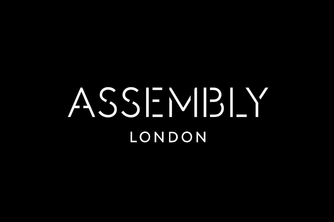 大型开发项目Assembly创意Logo设计:logo设计