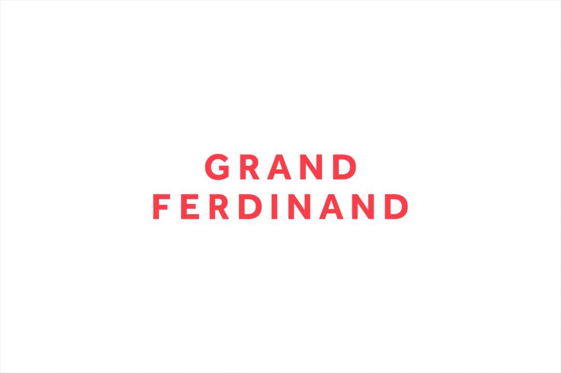 费迪南德酒店vi设计,logo设计