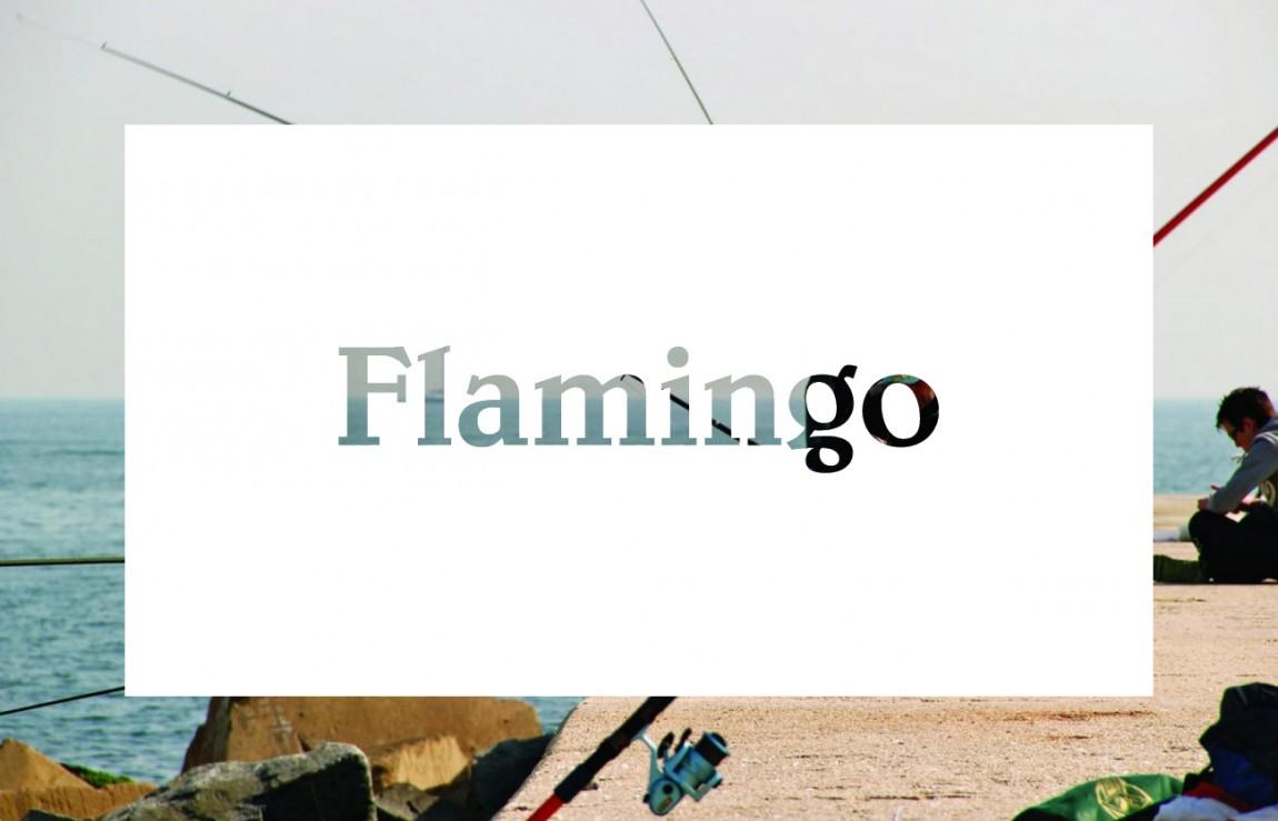 Flamingo 创意品牌logo设计:logo设计
