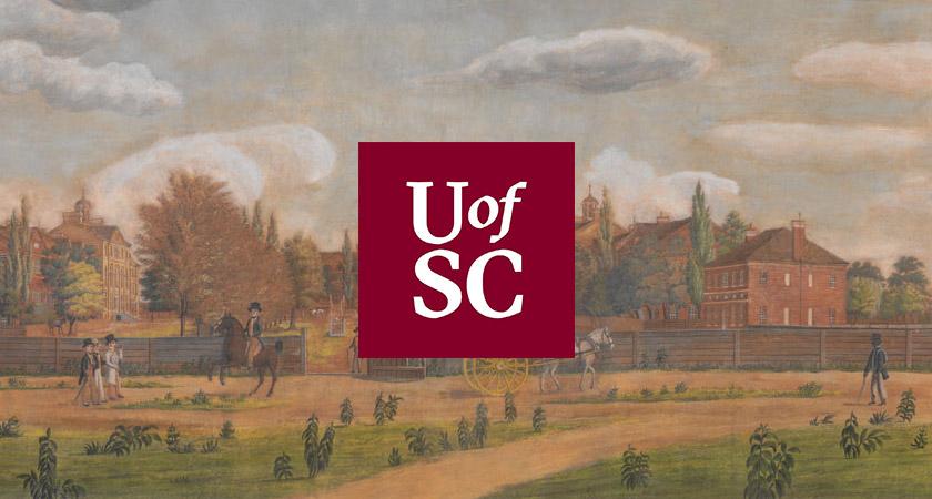美国南卡罗来纳大学vi视觉设计