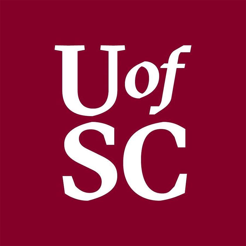 美国南卡罗来纳大学vi视觉设计, logo设计