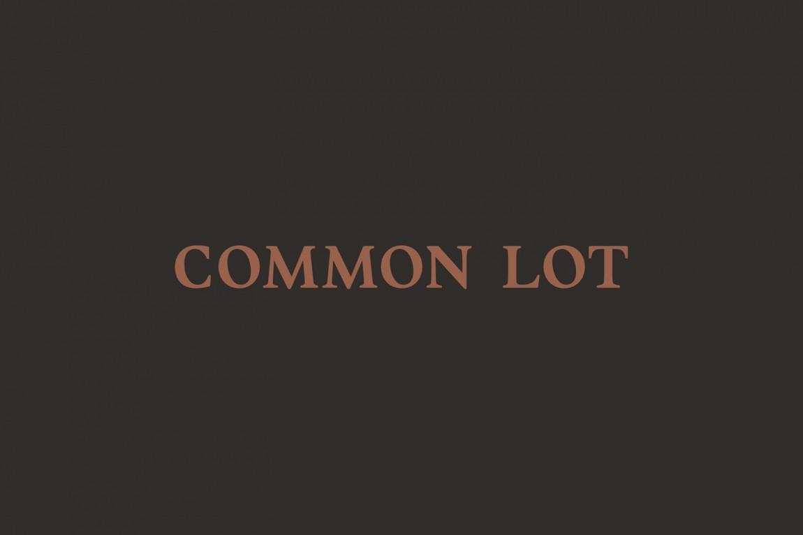 Common Lot餐饮品牌vi设计, 字体设计
