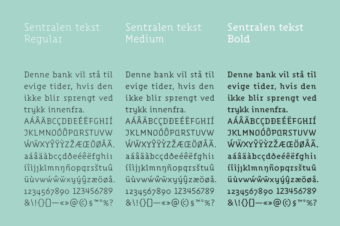 Sentralen文化中心vi企业形象设计,专有字体设计