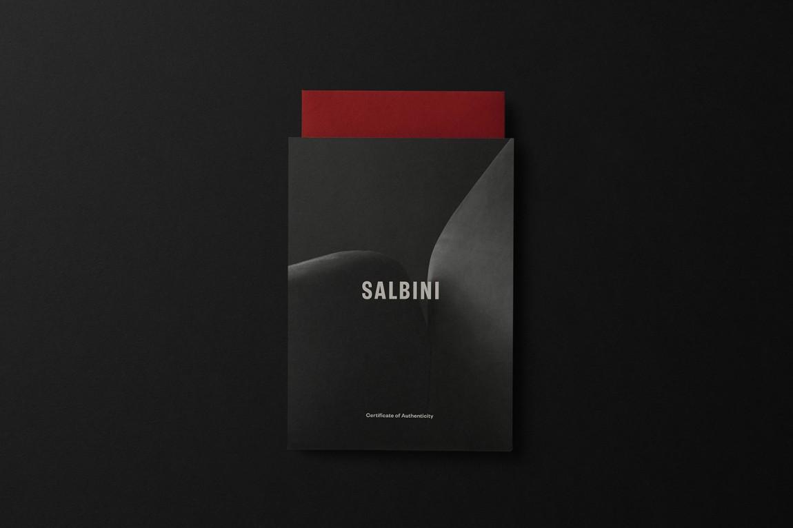 欧洲高档家具和电器在线零售商Salbini品牌设计,信封设计