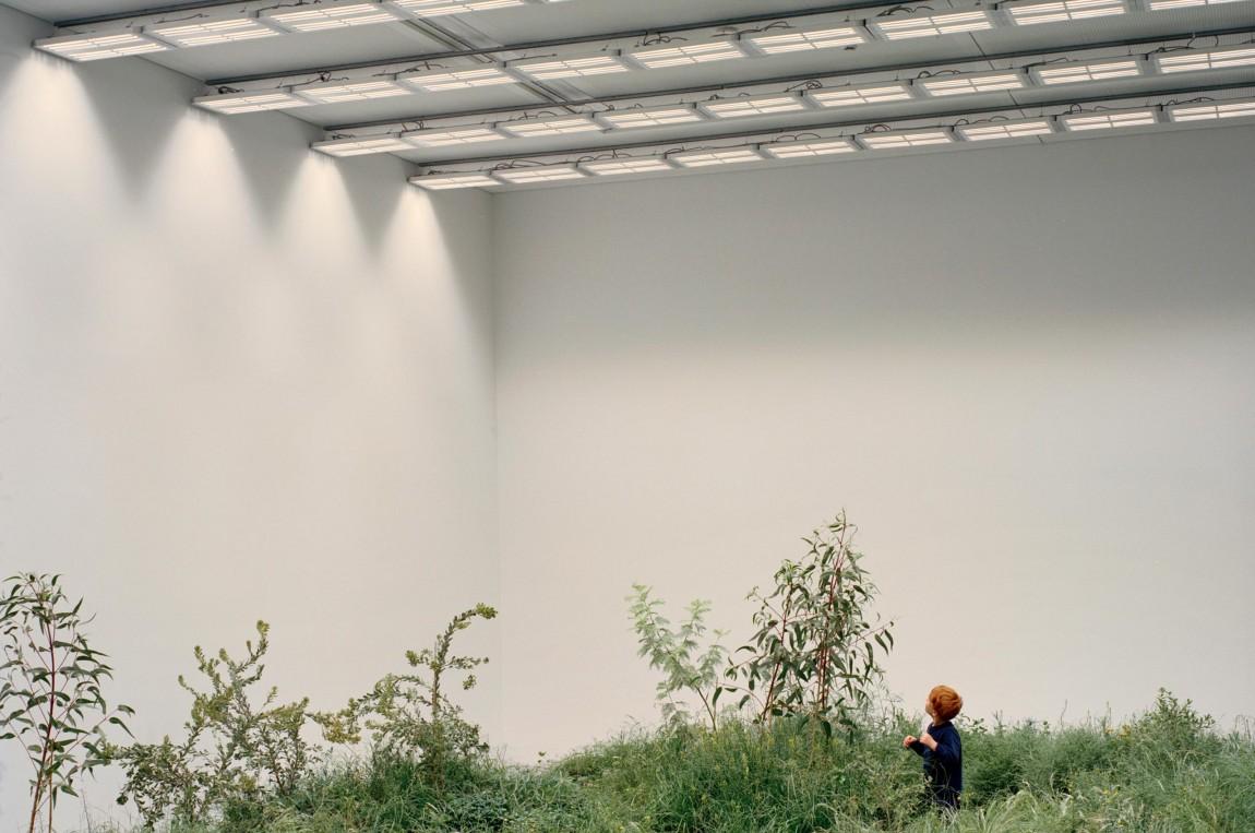 国际建筑双年展Repair展馆视觉形象设计