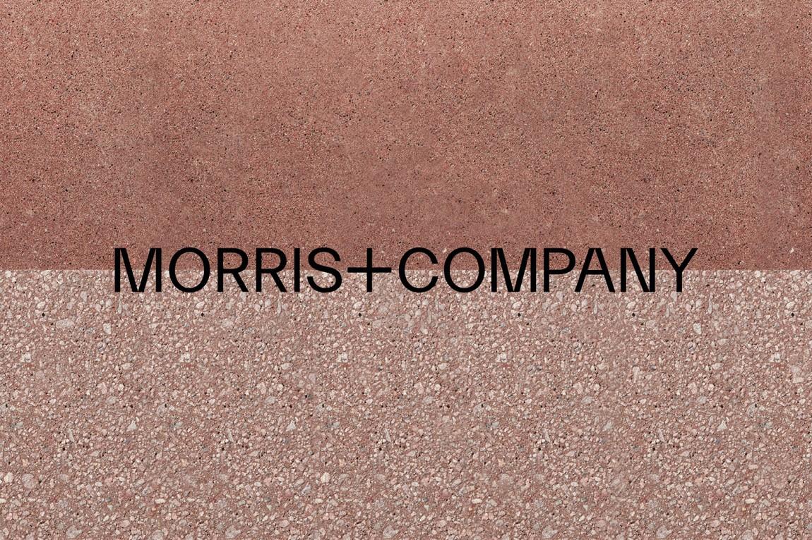 Morris + Company设计公司高端vi设计系统,logo设计