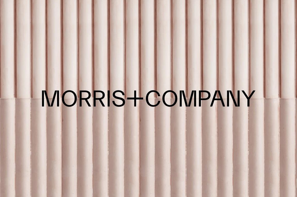 Morris + Company设计公司高端vi设计系统