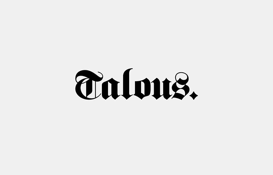 Talous金融投资银行公司vi设计,logo设计