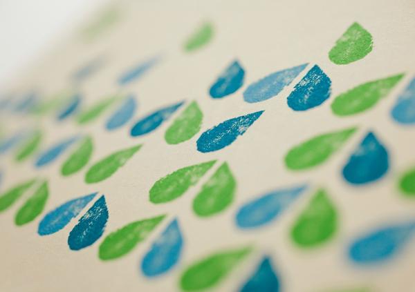 Earthwise绿色环保生态友好洗涤产品包装设计