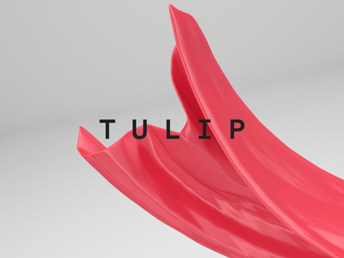 服装和鞋类护理公司Tangent GC产品形象塑造, 包装设计