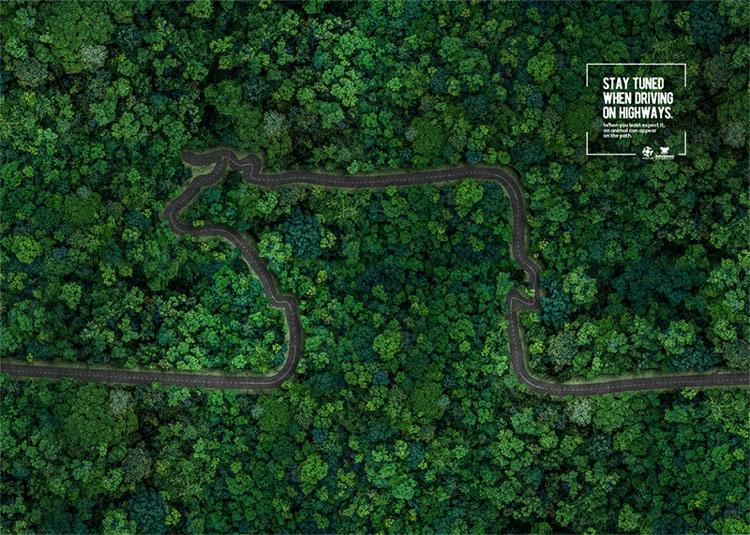 巴西国家交通部高端海报设计
