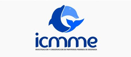 广州logo设计公司整理:18个海豚元素优秀logo设计