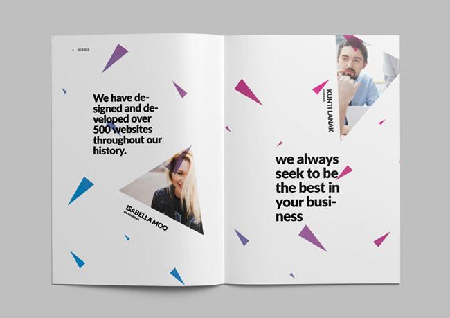 优秀招商画册设计欣赏