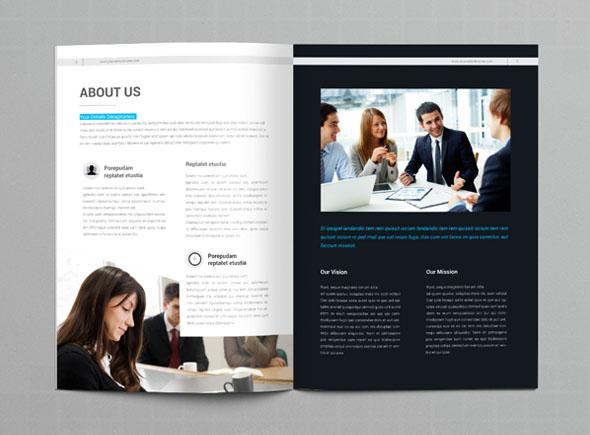 郑州画册设计公司分享:蓝色商务公司画册设计印刷作品