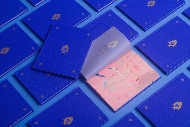 公司画册设计公司分享蓝色创意画册设计案例