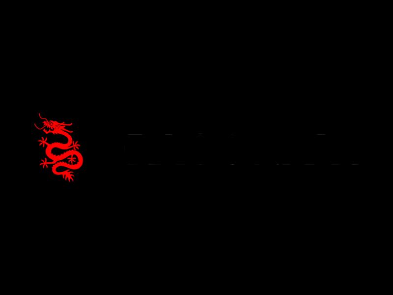 Dragonair logo logotype