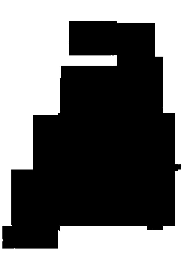 Lamborghini logo black