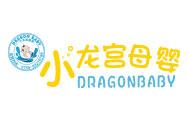 小龙宫婴儿游泳馆母婴用品标志logo设计,品牌设计vi策划