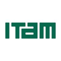 墨西哥自治大学(ITAM)logo设计,标志,vi设计