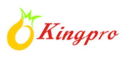 凤梨kingpro面条标志logo设计
